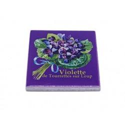 Magnet violettes de...