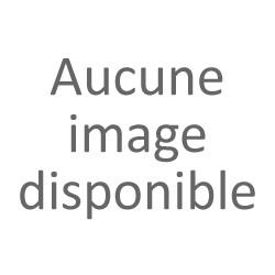 Violettes de Tourrettes